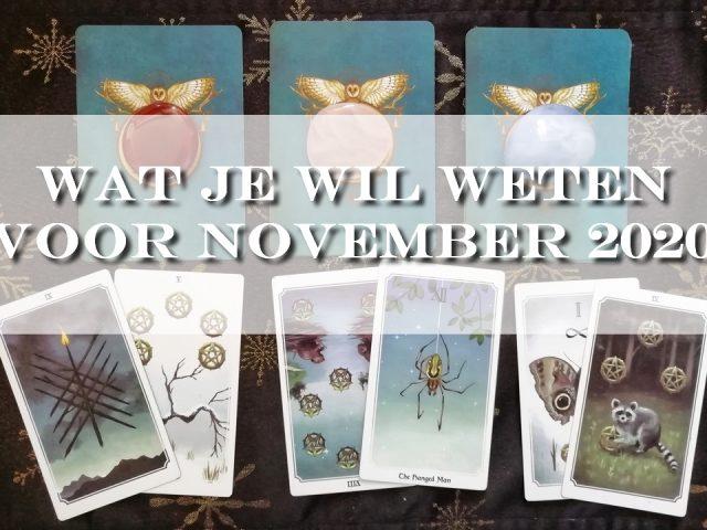 reading november 2020